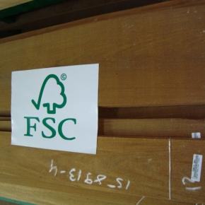 Laminas-FSC09