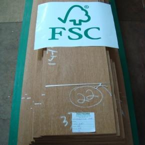 Laminas-FSC10