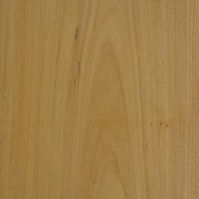 Tauari Branco